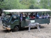 casela-photo-safari-2